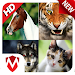 Download 150 Animal Sounds 275 APK