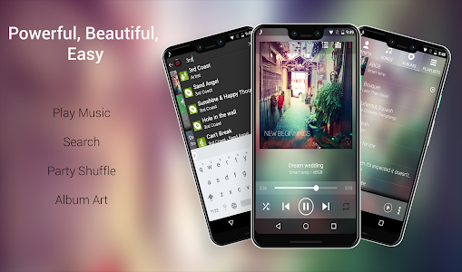 screenshot of Audio Player version Varies with device