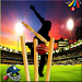 Download Domestic Cricket Tournament 1.2 APK
