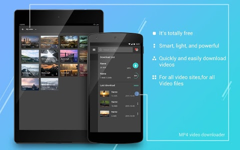 screenshot of Free MP4 Video Downloader version 1.2.9
