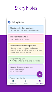 screenshot of Microsoft OneNote: Save Ideas and Organize Notes version 16.0.12026.20114