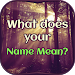 Download What does your Name Mean 1.3 APK